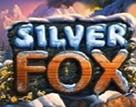 Silver_Fox-136x107