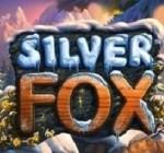 Silver Fox Spielautomat